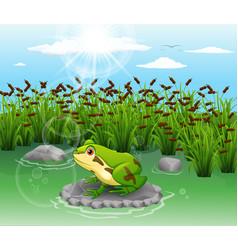 Cartoon frog cute scenery vector