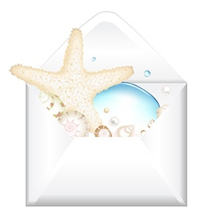Open Envelope With Starfish vector image