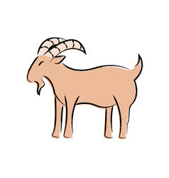 outline draw goat vector image