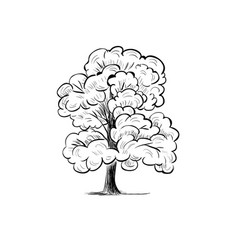 Tree sketch hand drawing silhouette tree vector