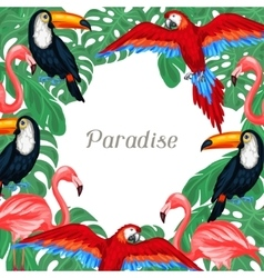 Tropical birds background design with palm leaves vector image vector image