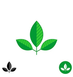 Three leaves simple natural logo vector image