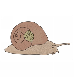 Digital snail with a small leaf vector image