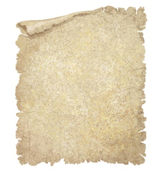 old paper textured vector image vector image