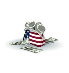 American wallet full of dollars vector image