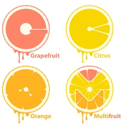 citrus icons vector image