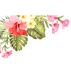 flower paradise summer vector image