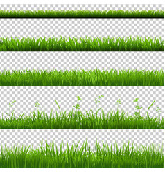 Green grass borders big set vector