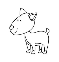 Pet animal icon image vector
