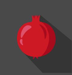 pomegranate cartoon flat icon dark background vector image vector image