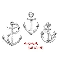 Vintage marine anchors with ropes vector image