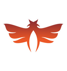 wings star abstract logo icon vector image