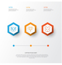 Zoology icons set collection of trunked animal vector