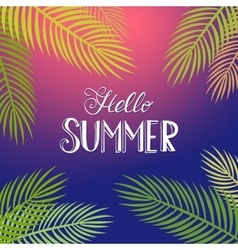 Hello Summer tropical background vector image