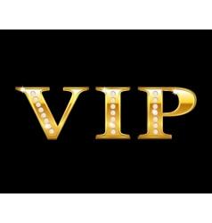 Vip golden card vector image