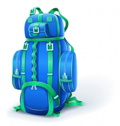 blue big backpack for travel vector image vector image