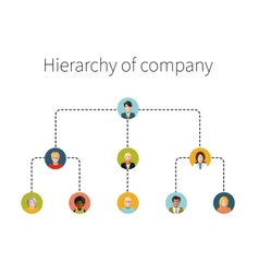 Hierarchy of company flat isolated vector image