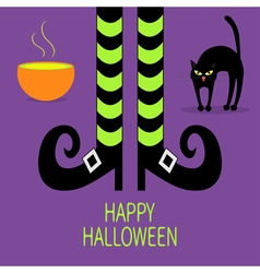 Cat arch back Cauldron green potion Witch legs vector