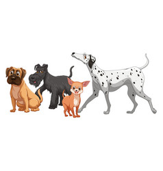 Cute animal dog group isolated on white background vector