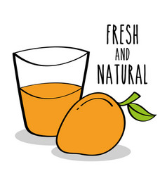 fresh and natural mango fruit and juice vector image