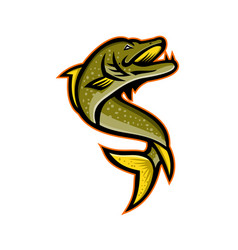 Northern pike sports mascot vector