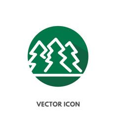 pine tree icon vector image