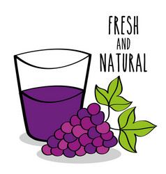 fresh and natural fruit grapes and juice vector image