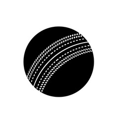 black cricket ball icon game equipment vector image