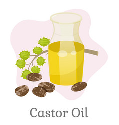 castor oil in glass bottle with branch vector image