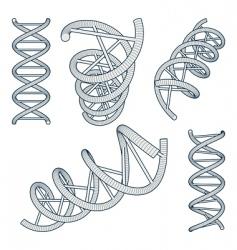 Dna symbols set vector