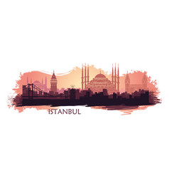 Landscape of the turkish city of istanbul vector