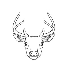 sketch of deers head portrait of forest animal vector image