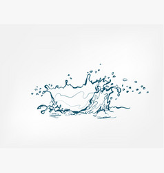 splash isolated line water drop vector image