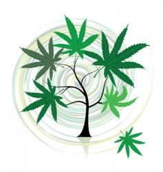 cannabis tree vector image