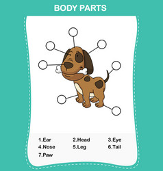 Dog vocabulary part of body vector