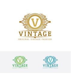 elegant fashion logo with letter v vector image