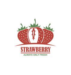 emblem of strawberries vector image