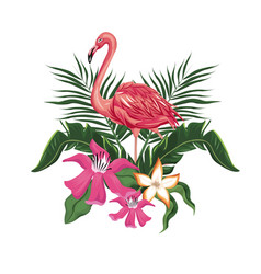 Flamingo flowers exotic tropical bird vector
