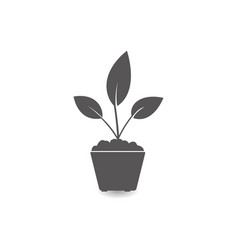 plant in a pot icon simple flat style vector image