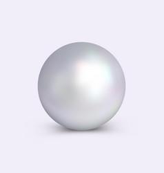 Realistic pearl vector