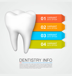 Tooth information with numbering dentistry info vector