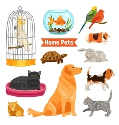 Home Pets Set vector image
