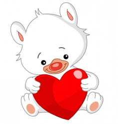 valentine white teddy bear vector image vector image