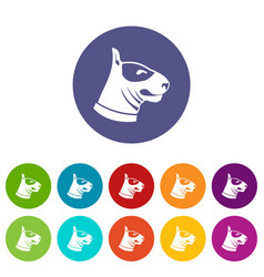Bull terrier dog set icons vector
