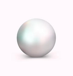 Realistic pearl for decoration vector