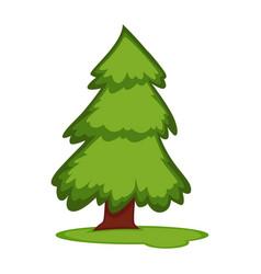 Tall fir tree on piece grass land vector