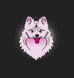 image of a dog pomeranian dog head vector image vector image
