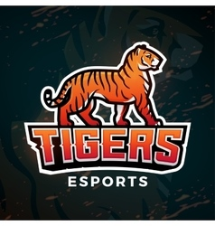 Tiger sport logo Mascot design template vector image vector image
