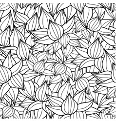 Black drawing succulent plant texture vector