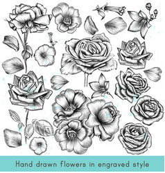 Collection high detailed flowers for design vector